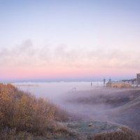 Холодный туман :: Сергей Щеглов