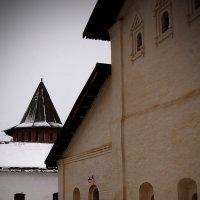 Спасо-Ефимьевский монастырь :: Евгений