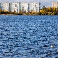 Городской пейзаж :: Светлана Ку