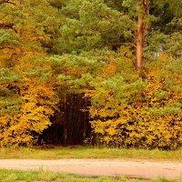 Врата осени :: Юрий Бичеров