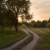 Дорога :: Валерий Чернов
