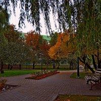 В осеннем парке(2) :: Vladimir Semenchukov