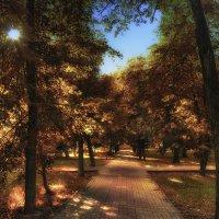 Осенний парк играет красками :: Ирина Falcone