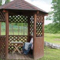 Беседка для уединения в Николо-Косинском монастыре :: Елена Павлова (Смолова)