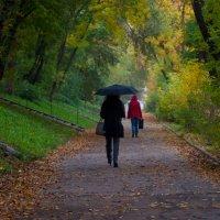 Обычная роскошная городская осень :: Albina