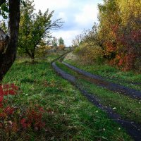 Дорога в осень... :: Влад Никишин