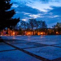 Вечерняя осень :: Света Кондрашова