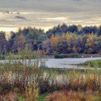 Осенний пруд :: лиана алексеева
