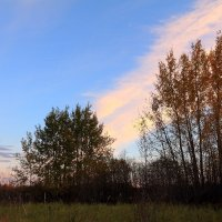 Осеннее утро на нашей северной земле :: Виктор Коршунов