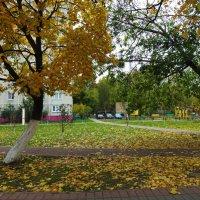 Осень  в городе. :: Лара ***
