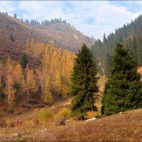 Осень в горах. :: Anna Gornostayeva