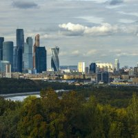 Москва-сити :: Дмитрий Вдовин