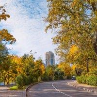 Городской пейзаж :: Виталий