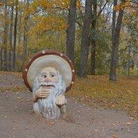 Очень странный лес (здесь грибы с глазами) :: Наталия П
