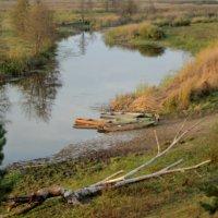 Река Битюг в октябре 2016 года. Вода ушла из реки куда то... :: Ольга Кривых