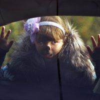 дочка Катя заглядывает в нашу машину :: Сергей Воробьев