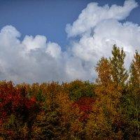 Осенние облака :: Лариса Димитрова