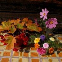 До свиданья лето, здравствуй осень :: Нина северянка