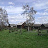 Село Шушенское. Весна :: Марина Домосилецкая