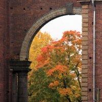 Осень в Новой Голландии :: Вера Моисеева