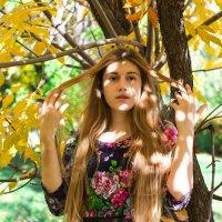 Волшебная осень :: Яна Савина