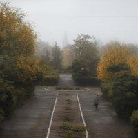 Туман :: Екатерина Пономарева