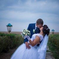Свадебный поцелуй :: Наталия Квас