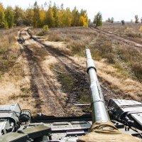 Осенний пейзаж. Вид с башни :: Роман Скоморохов