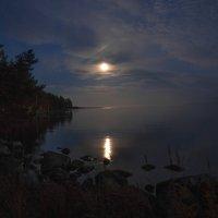 Лунная ночь :: Софья Борисова