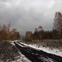 Начало октября и тучи снежно хмурятся... :: Александр Попов