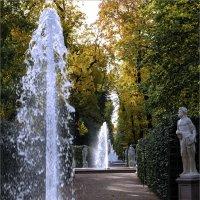 Осень в летнем саду. :: Александр