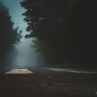 Таганрог. Город туманов. :: Данила Навиков