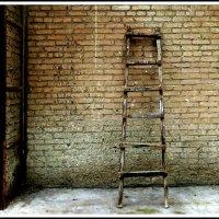Одиночество-сволочь, одиночество-скука :: юрий