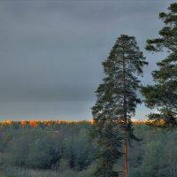 Темнеющие дали :: Валерий Талашов