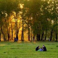 Щедрый на золото майский закат :: Екатерина Торганская