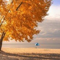 Пляж :: Mike214