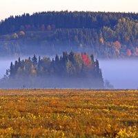 туман :: Максимус Кунгурский