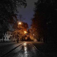 Осенний дождливый вечер. :: Oleg4618 Шутченко