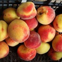 Румяные персики так и просились в рот!.. :: Нина Корешкова
