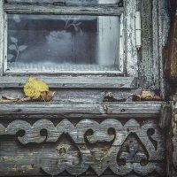 Осень в окне :: Ольга Мансурова