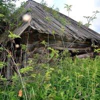 Заброшенный Старый Дом... :: Дмитрий Петренко