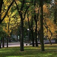 Осенний парк. :: Paparazzi
