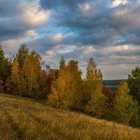 Золотая осень. :: ALEXANDR L