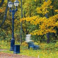 Осенний фантом :: Сергей Пучков