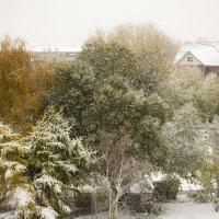 первый снег :: Екатерина Бильдер