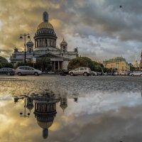 «Зеркальный» этюд :: Valeriy Piterskiy