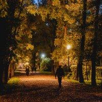 Вечерний парк :: Андрей Липов