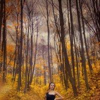 Хмурая осень :: Мария Бизунова