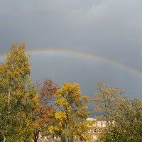 Осенняя радуга. :: Элен