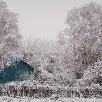 Снежный домик :: Larissa